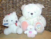 Teddy bears for delivery inj Cyprus with flowers and plants