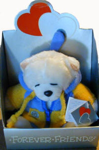 Forever friends cool teddy in a bathrobe is for delivery in Cyprus with flowers and plants
